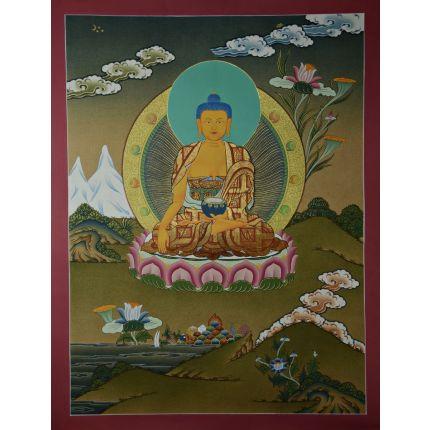 """24.5""""x18.5""""  Shakyamuni Buddha Thangka Painting"""