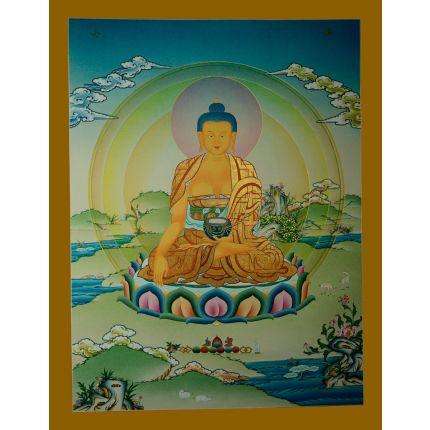"""26.25""""x20.25"""" Shakyamuni Buddha Thangka Painting"""